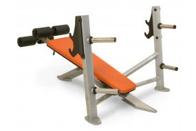 Integrity Decline Bench Press