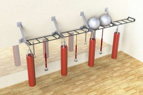 Wall Mounted Monkey Bars and Punch Bags